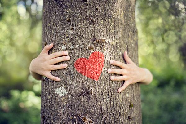 manos abrazando un árbol