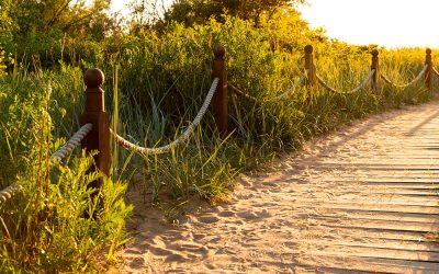 Proyecto de conservación del patrimonio natural